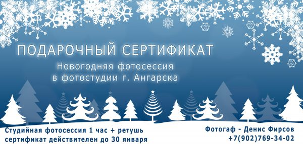 Подарочный сертификат на новогоднюю фотосессию в Ангарске